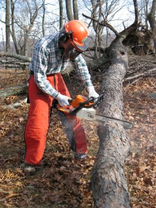 Volunteer chain sawyer