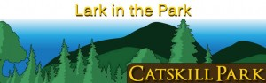 Catskill Mountains Lark in the Park