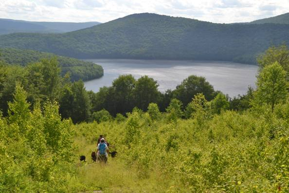 Hikers enjoy the new Shavertown Trail near the Pepacton Reservoir. Photo by Ann Roberti