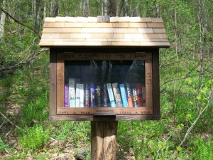 AT Little Free Library at Dover Wiley Shelter