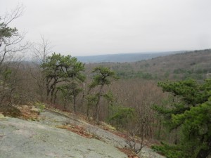 View from newly preserved parcel on the Shawangunk Ridge.