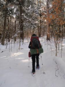 WinterSnowshoeTrail