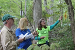 The maintainers are great students! Shown here identifying a leaf with the help of Linda.