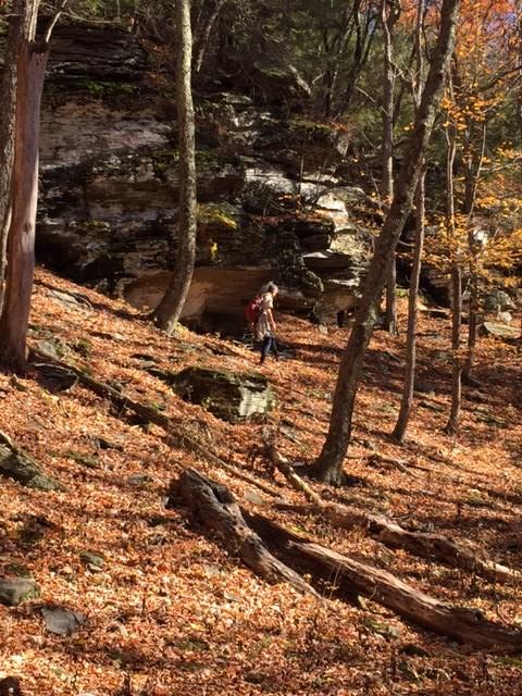 Mt Tobias Scout Hike